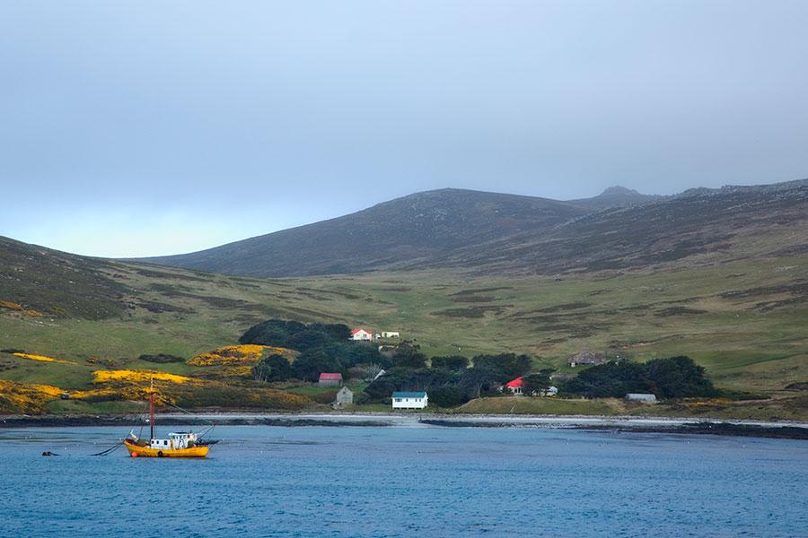 A08 Falklands, Carcass Island