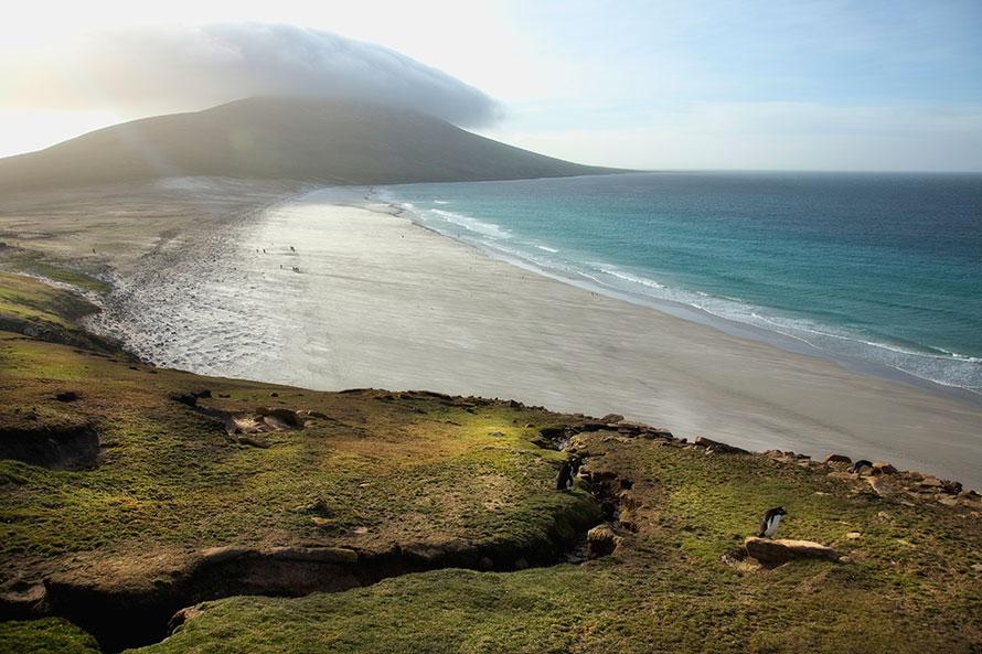 A24 Falklands, Saunders Island