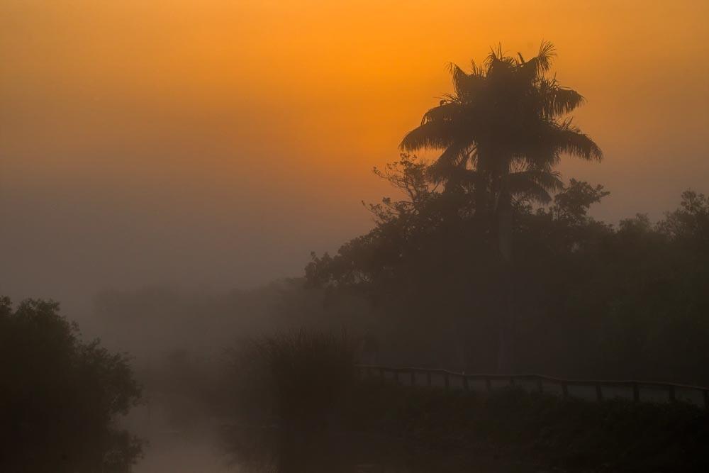FL024 Everglades
