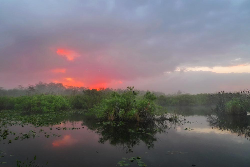 FL025 Everglades