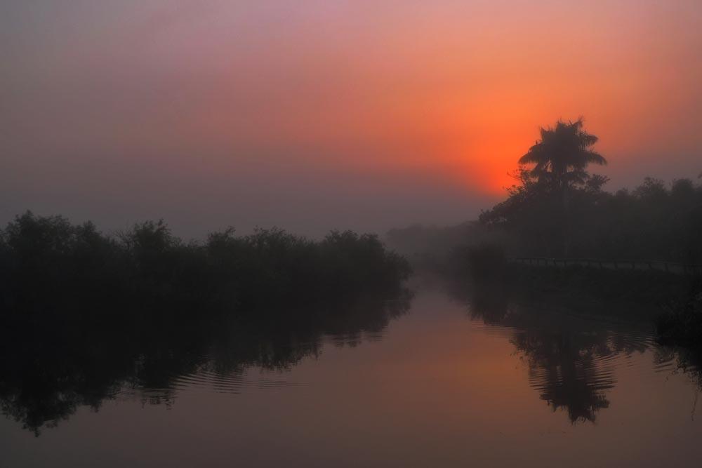 FL027 Everglades
