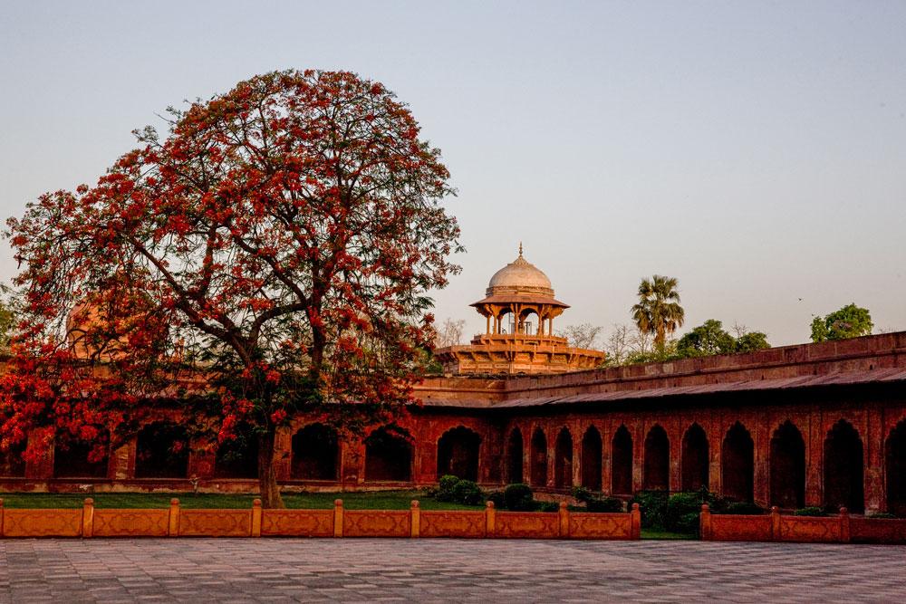 IN085 Taj Mahal