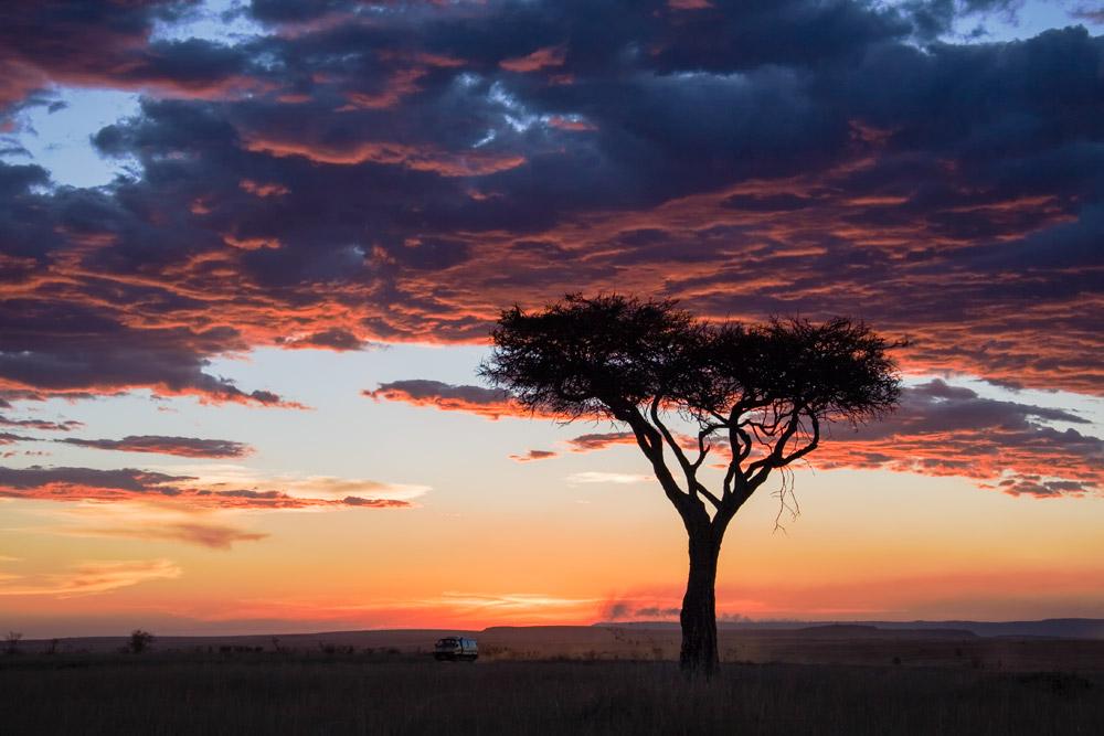 K101 Masai Mara, Abendhimmel / evening sky