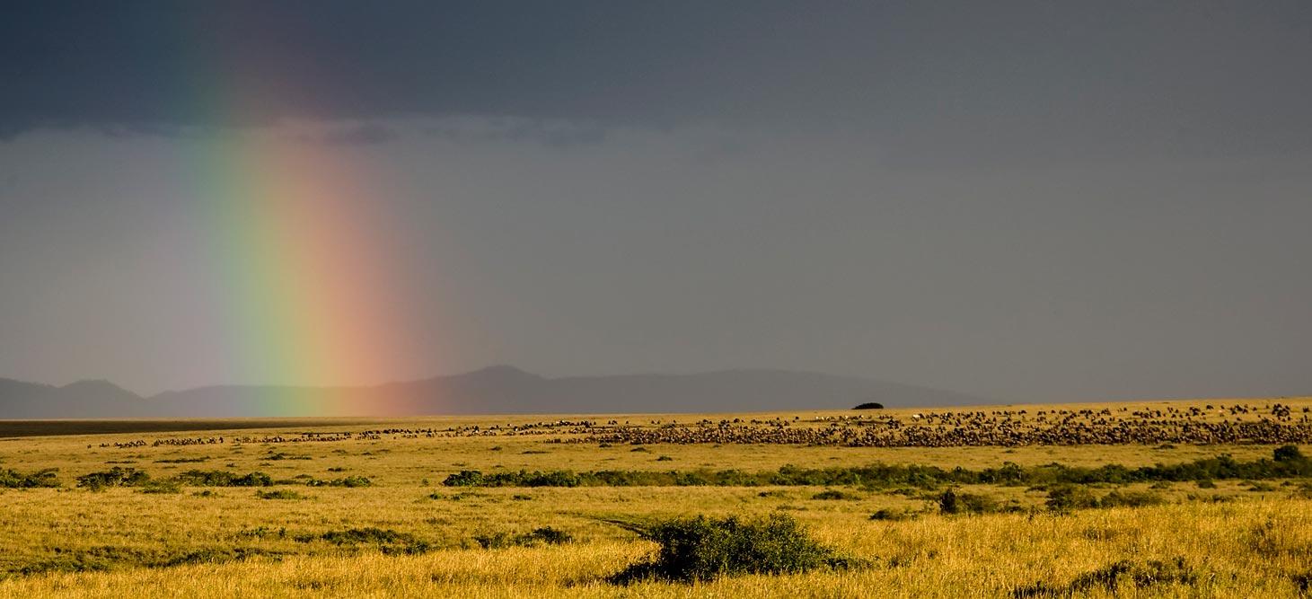 K269 Masai Mara, Regenbogen / rainbow