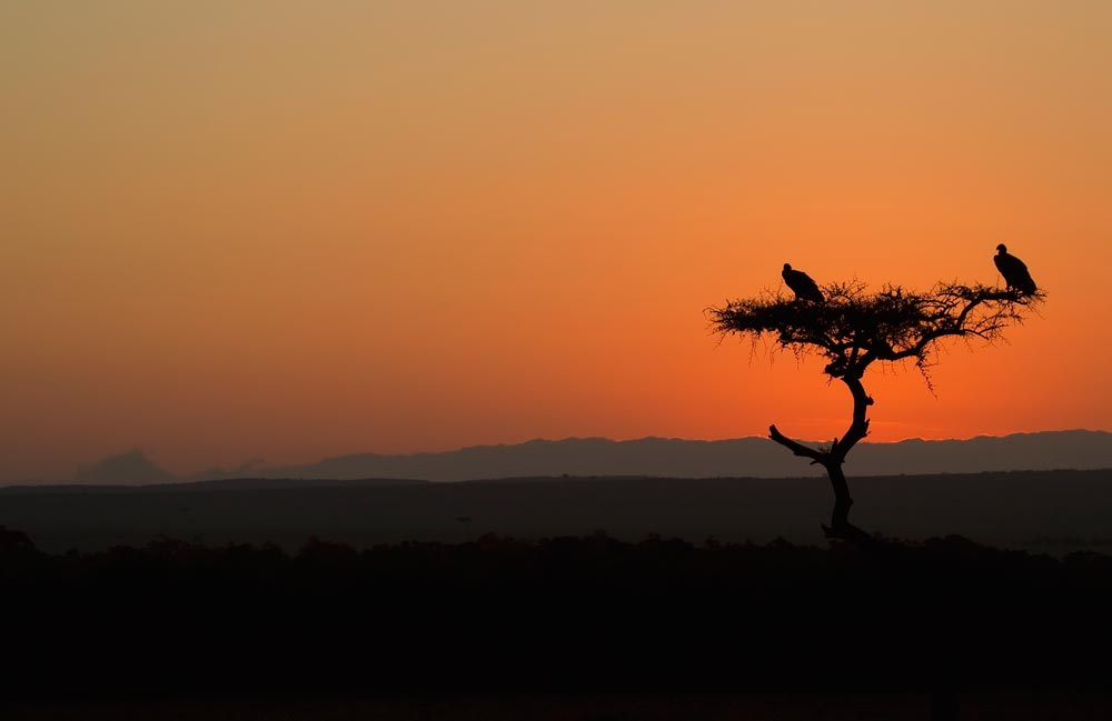 K401 Sonnenaufgang / sunrise