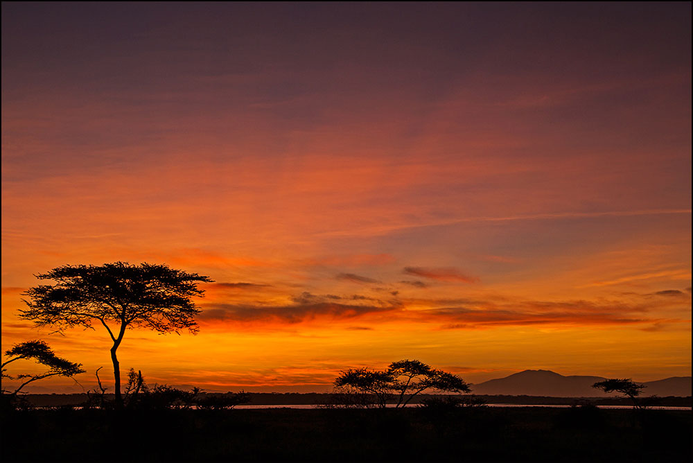 PF53 Masai Mara, Sonnenuntergang / sunset